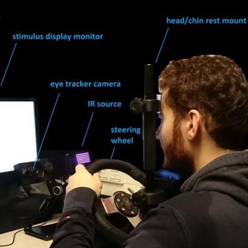 Desktop driving eye tracking research
